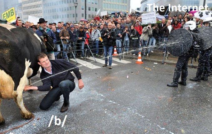 /b/ vs internet. . /b/ vs internet
