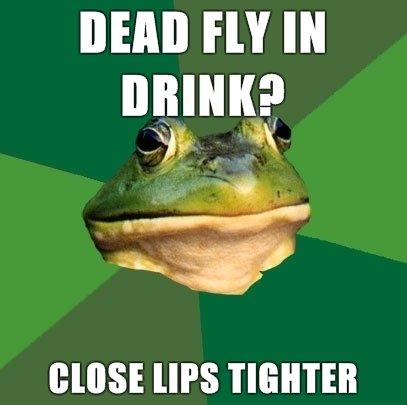 Bachelor frog oc. decided to make some bachelor frog oc . DEM] HY IN DRINK? Bachelor Frog Fly drink game the