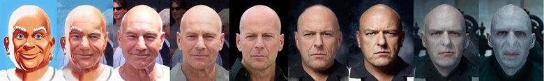 Bald people. .. baldvolution Bald people baldvolution