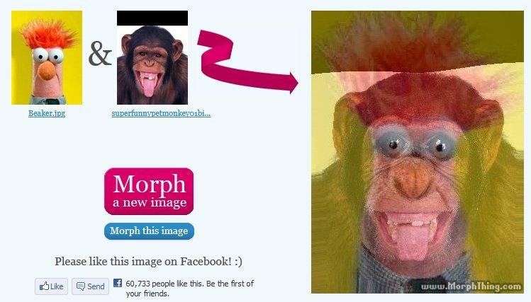 Beaker Monkey morph. .. <know the secret> beaker monkey morph