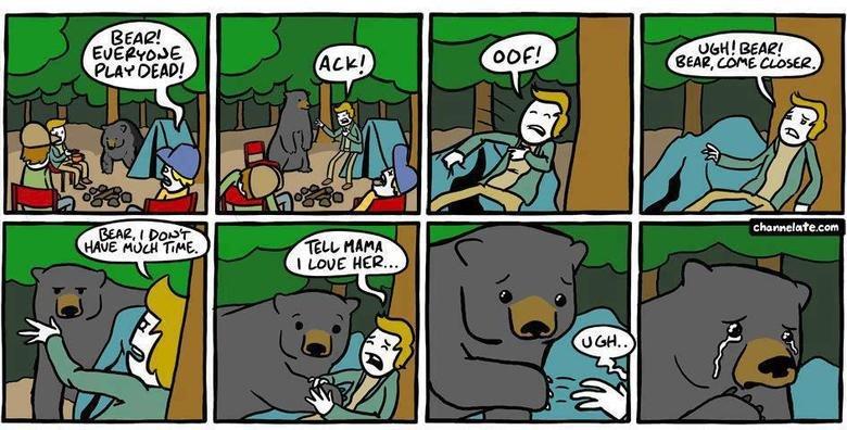 Bear Attack. . Bear Attack