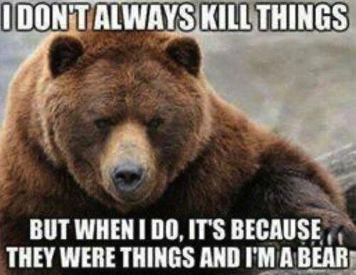Bear Logic. . Bear Logic
