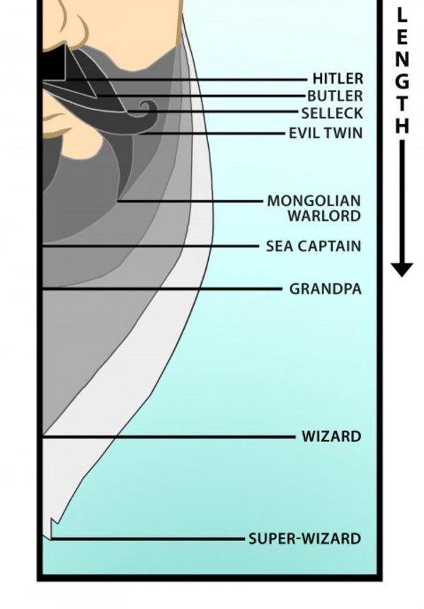 BEARD CHART. Check your beard here........Bitch. Ieu! HITLER BUTLER SELLECK EVIL TWIN MONGOLIAN WARLORD SEA CAPTAIN GRANDPA WIZARD. i believe you forgot zz top beard man