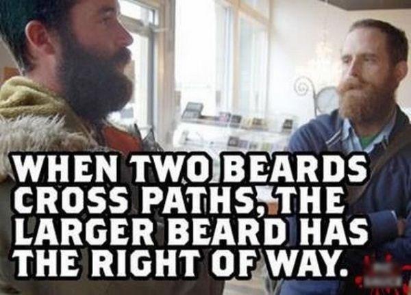 "Beards. Makes sense. Shnit "" ii CROSS PATHS,' -THE LARGER BEARD was . THE RIGHT o_ . sub pls"