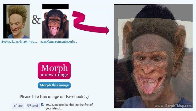 Beavis Monkey morph. .. <know the secret> beavis monkey morph