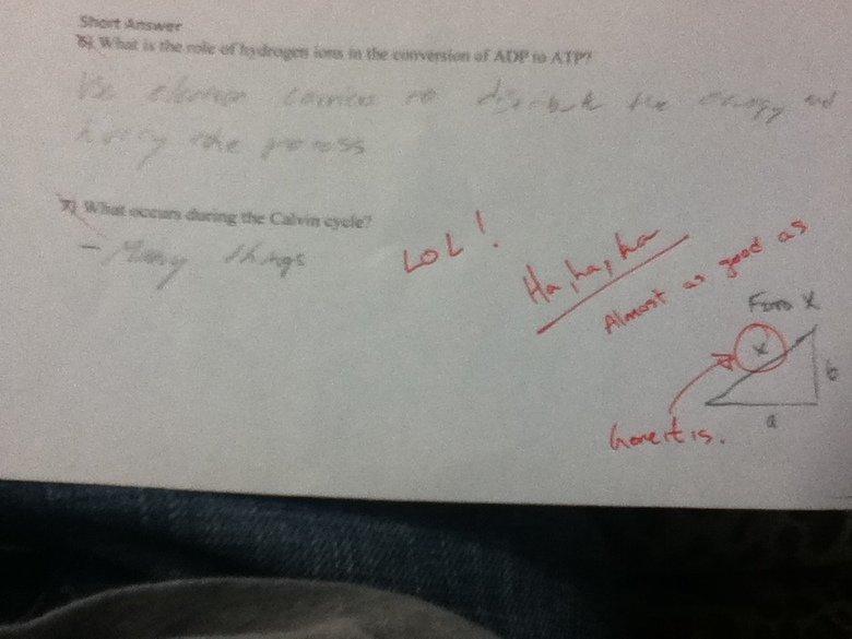 Biology Quiz. My bio teacher is cool ^_^. Biology Quiz My bio teacher is cool ^_^