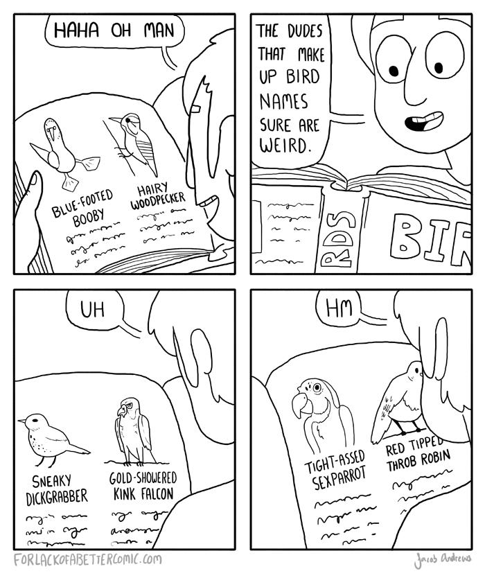 Birds. are the words. twil on 'tii) swam acirikis) Kim: Remit mm. I assume you've heard, then. Birds are the words twil on 'tii) swam acirikis) Kim: Remit mm I assume you've heard then