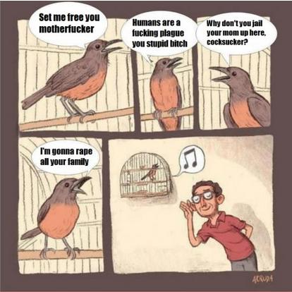 Birdsong. Not mine.. Birdsong Not mine