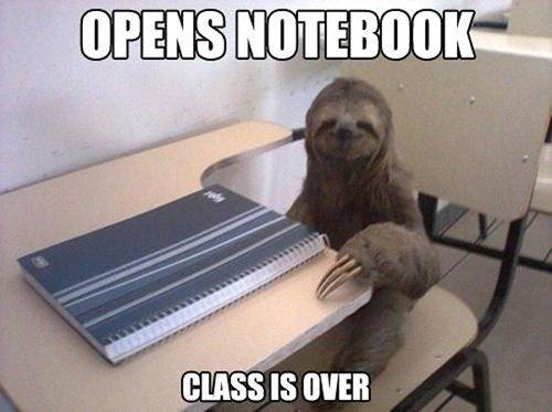 blb sloth. . blb sloth