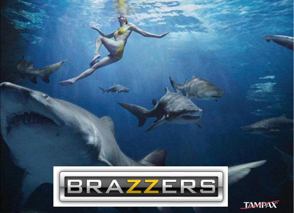 Brazzers. . brazzers Shark tampax