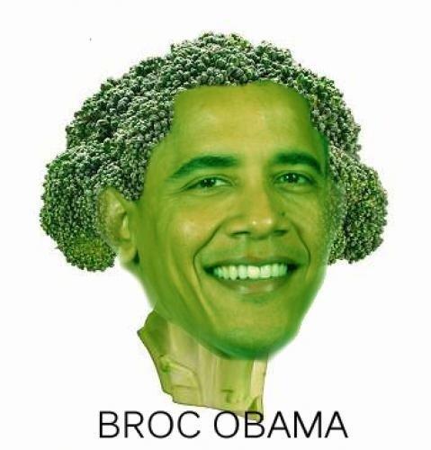 brocobama. nuff said.. cool pic bro.....needless to say, i'm.......jelly barrack broc obama