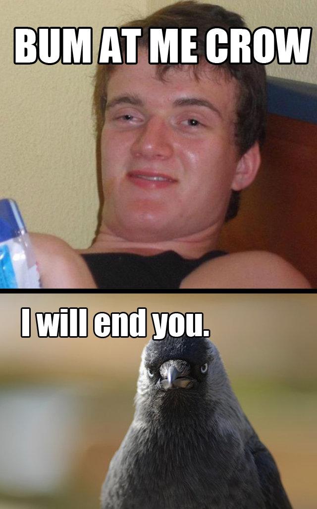 Bum Crow. OC.. ten guy Come at me bro bum at me crow