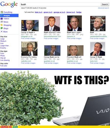 Bush. credit to comixed. Goole bust, mu Hur' Opn Entry liftin- Fan F% tag Bush credit to comixed Goole bust mu Hur' Opn Entry liftin- Fan F% tag