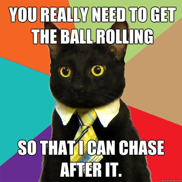 Business cat. . Amen IT. Business cat Amen IT