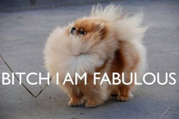 FAB-U-LOUS. .