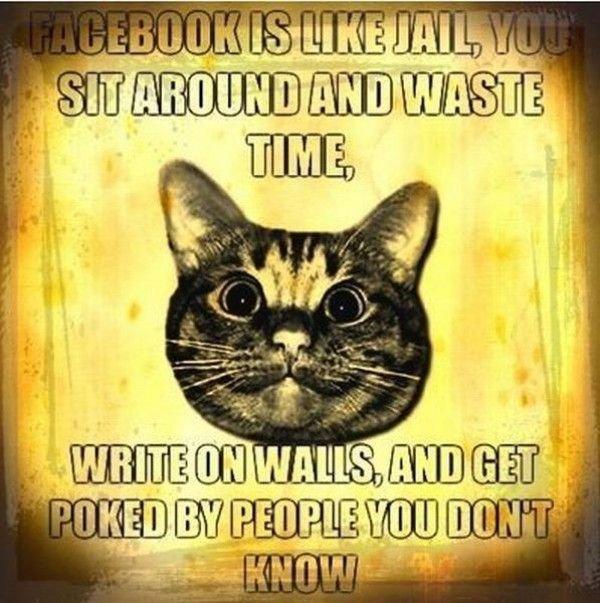 facebook. .. Hooray for reposts. facebook Hooray for reposts