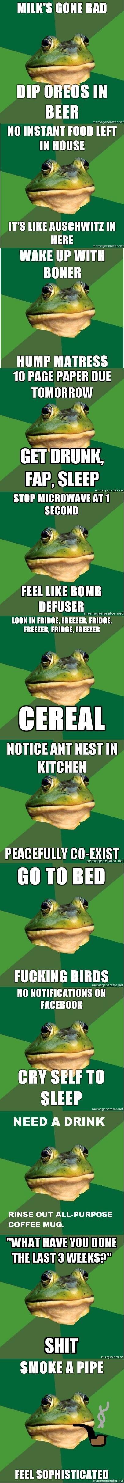 FBF pt1. Frogs a-plenty.<br /> /funny_pictures/639999/FBF+pt2/. MESS BEER llnr: lno. r: i. xiranor. ii' mi diblie; - tlt. HUMP MATHE'S 10 PAGE PAPER DUE t Frog meme fbf lol