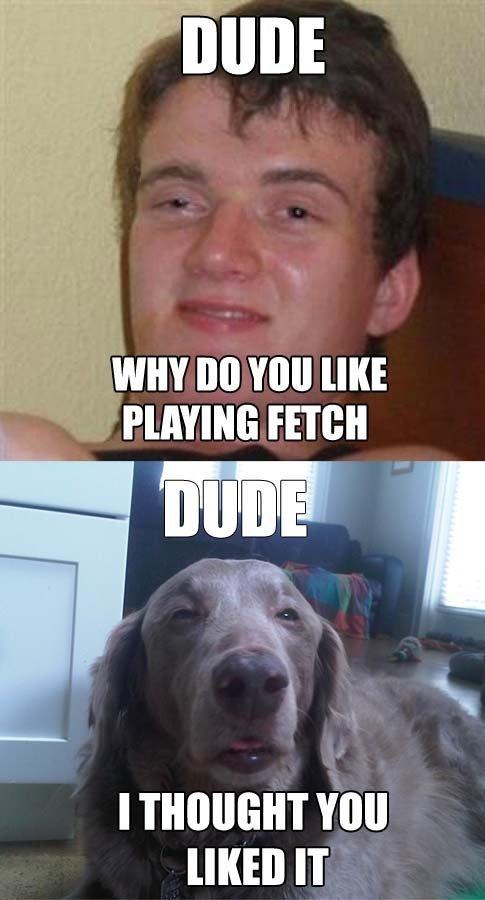 "fetch. . Pomm: mg"" fetch Pomm: mg"""