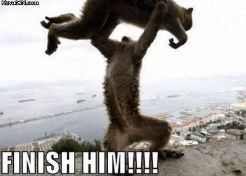 FINISH HIM. fatality.. Animality! FINISH HIM fatality Animality!