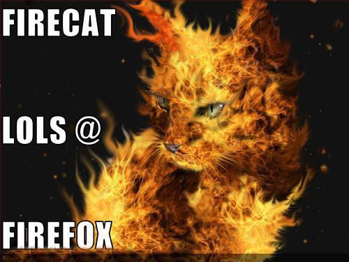 FIRECAT VS FIREFOX.. FIRECAT VS FIREFOX... I tell you if have tried IE ,FireFox Rocks! FIRECAT VS FIREF