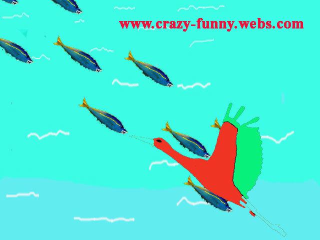 fish attack. . fish attack