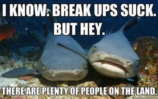Fish Fucker. . I KNOW: BREAK UPS SUCK. MT HEY. Fish Fucker I KNOW: BREAK UPS SUCK MT HEY