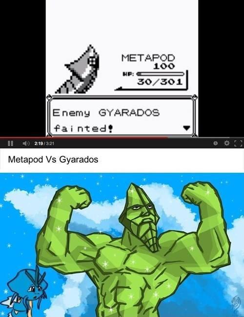 Float like a cacoon?. yes i do harden occasionally. METAPOD Enemy GYARADOS Painted! ?. Gyarados i... metapod Pokemon lifts