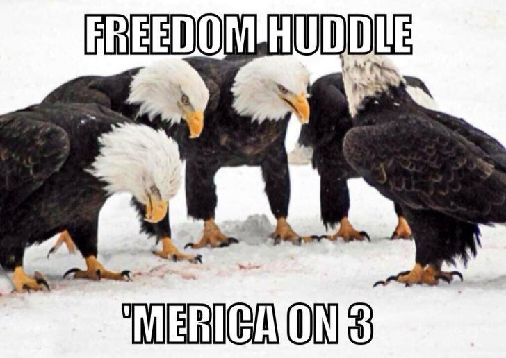 Freedom Huddle. . it q. The Eagles don't huddle though.
