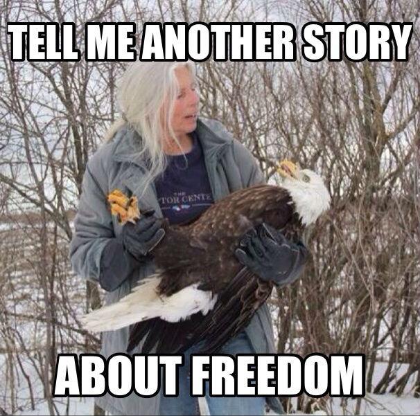 Freedom. . ER TORT it. freedom eagle america