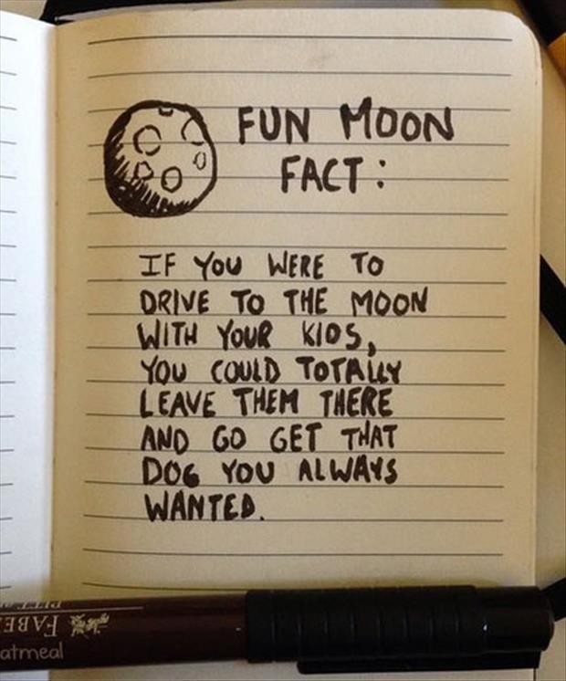 Fun fact. Nee.. Oatmeal's stuff, I'd wager. fact