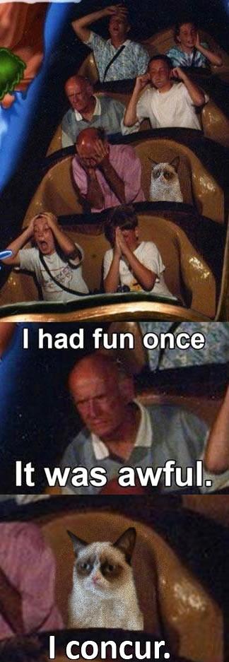 Fun... I never had it. I had fun once; l_ t was awful, Fun I never had it fun once; l_ t was awful