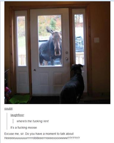 Jehovah's Moose. . EAMEMV til, 19: 2 rent Mt'' aeti tumblr moose hello