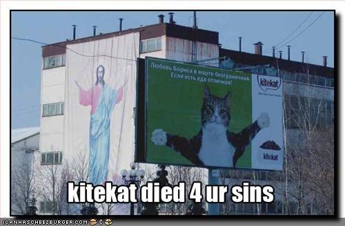 jesus cat. all hail. Jesus cat