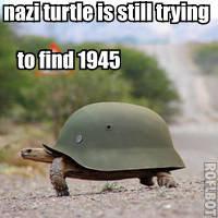 nazi turtle. nazi turtle. to and igiari. Gangen macht frei. nazi turtle