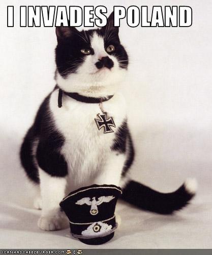 nazi cat. nazi cat. Elli/ MB. i have seen a hitler fish too will post it Nazi Cat