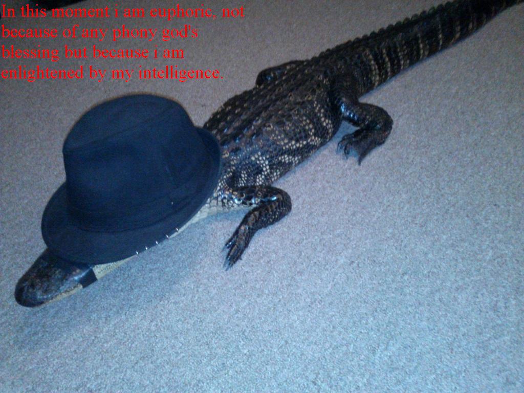 Neckbeard Crocodile. . Neckbeard Crocodile