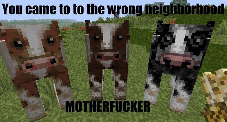 Neighborhood. . You Came