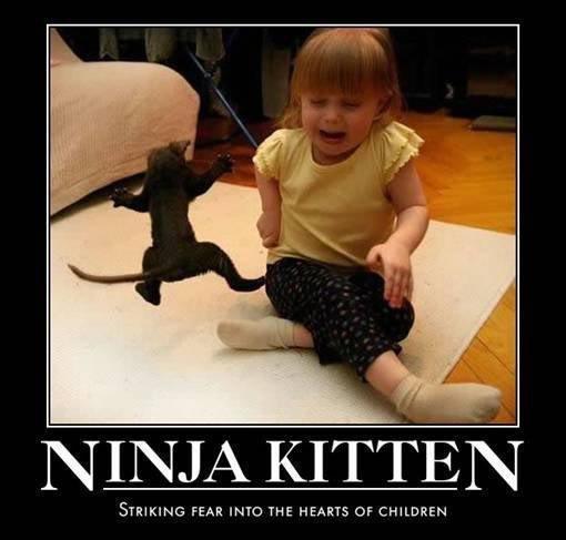 ninja kittin. . STRIKING FEAR INTO THE HEARTY Of CHILDREN ninja kittin STRIKING FEAR INTO THE HEARTY Of CHILDREN