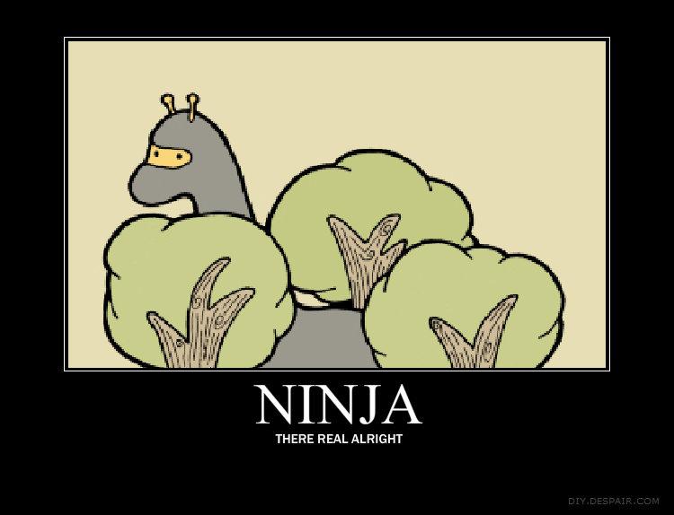 NINJA GIRAFFES. .... NINJA ) THERE REAL FREIGHT save funnyjunk