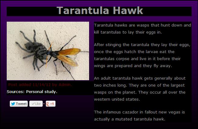 NOPE. More at . Tarantula Hawk Sources: Personal study. Tarantula hae./ ks are '.'-.-.' -5 that hunt dice. in and kill tarantulas to lay their e- SIS in, faffer