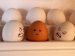 Racist eggs. Poor brown eggs.... Racist Eggs brown egg white potatoes