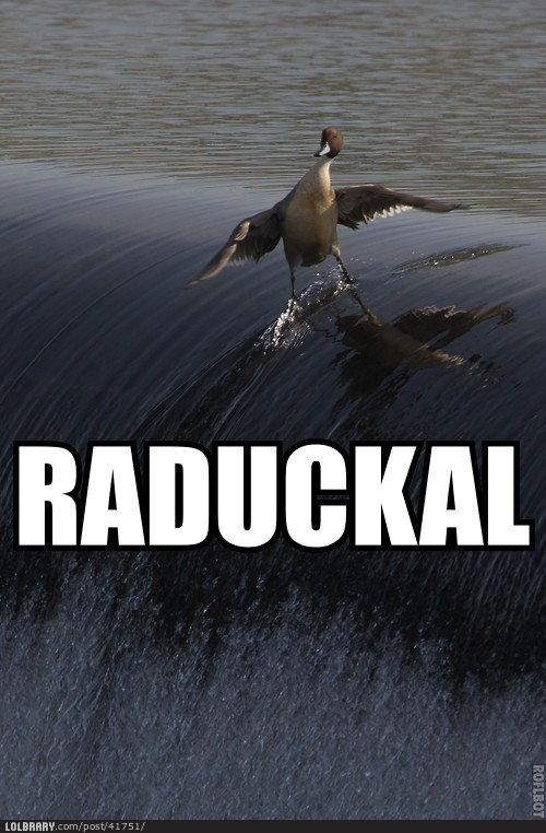 Raduckal!. . Raduckal!