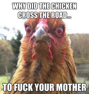 Rage Chicken. . tait ; Rage Chicken tait ;