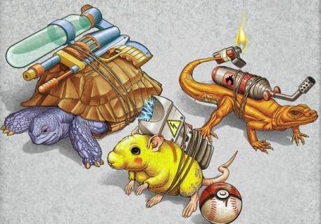 Real life Pokemon. Pokemon by Tiago Möller.. Ponyta Real life Pokemon by Tiago Möller Ponyta