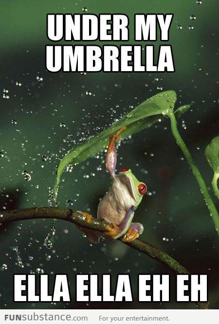 Rihanna frog. . funny Cute lol meme