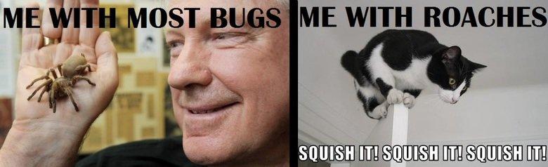 Roaches suck. I hate roaches x.x.. dem roaches..... you better run bugs Spiders roaches