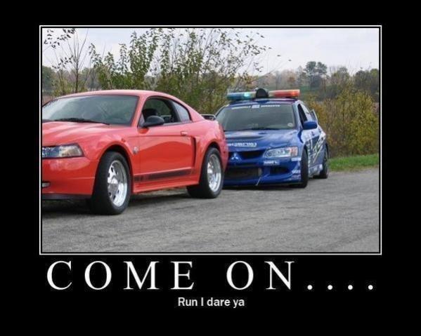 Run, I dare ya!. . Run I dare ya Lancer mustang