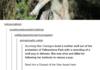 Scumbag hunter