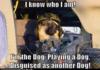 Im The Dog