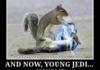squirrel sith lord vs squirrel jedi